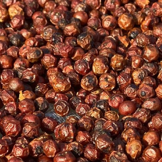 Grains de poivre rouge de Kampot IGP