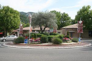aop Olives noires de Nyons - Rond point accès à la coopérative oléicole, bel olivier Tanche