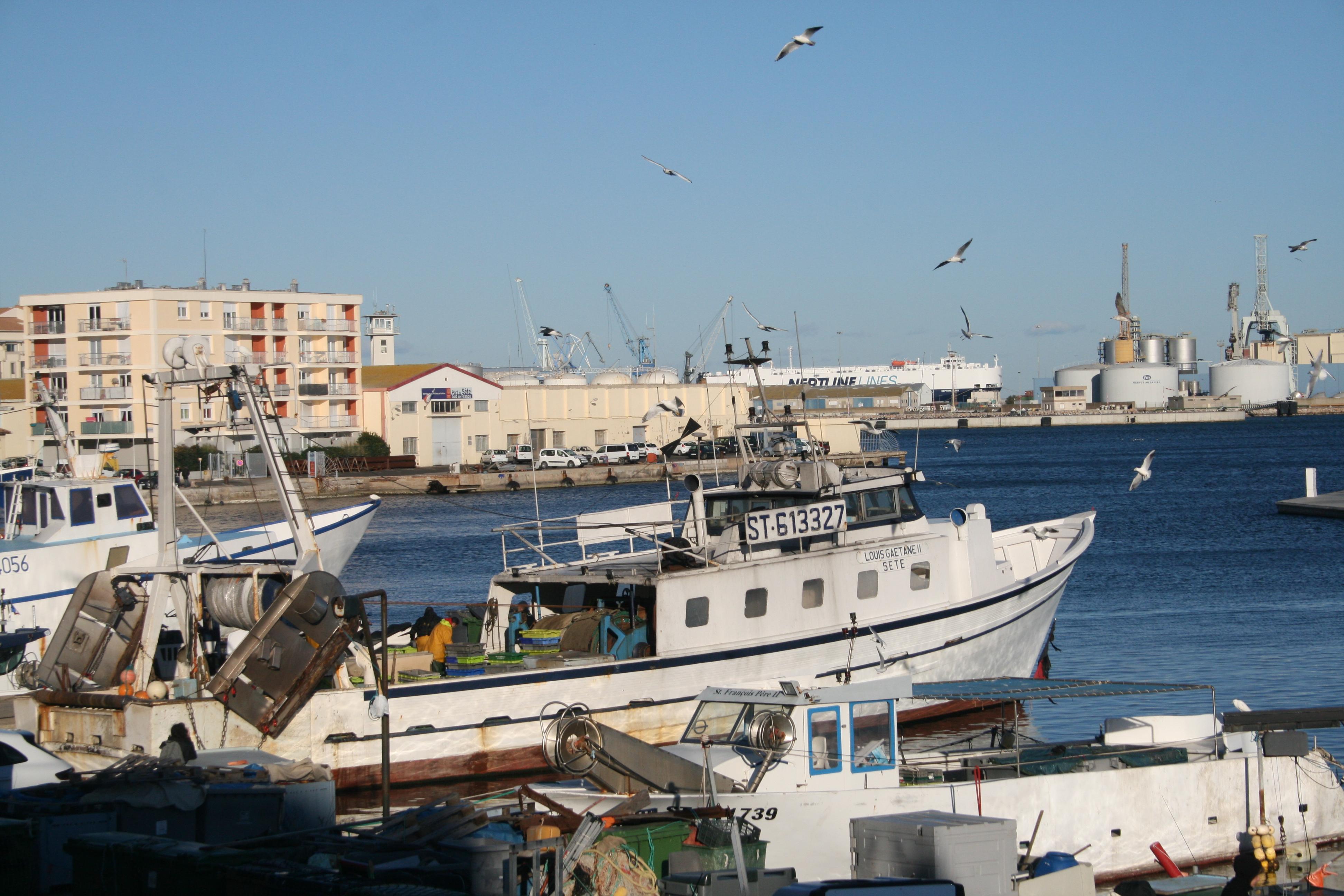 Pêche Port Grondin Sète Languedoc
